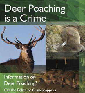 Poaching poster