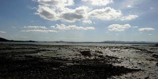 Foreshore at Dalgety Bay