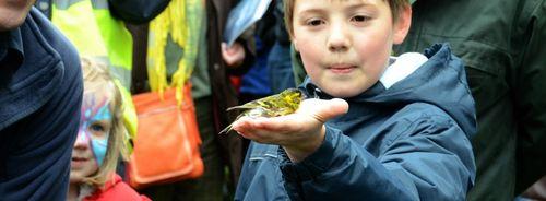 Boy at Scottish Birdfair