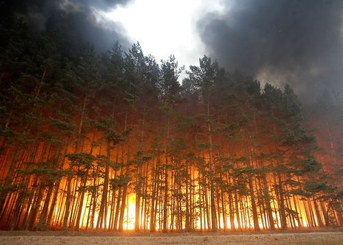 Wildfire in Russia