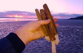 Hand-gathered razor clams