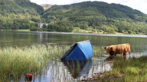 Tent at Loch Lomond