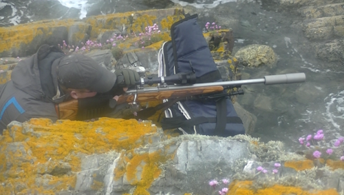 Seal shooter at Crovie (photo from Sea Shepherd)